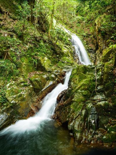 幻の滝を見に行った私が幻になるところでした