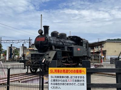 大井川鐵道のSLと天竜浜名湖線 だけどどっちも乗ってない #駅メモ