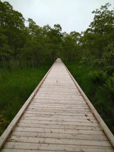 【北海道】 釧路湿原を3つの展望台から眺める 【釧路湿原】