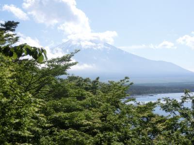 2021春 富士五湖:「山梨百名山」「富士山の見える山」の竜ヶ岳から、富士山は見えなかった?