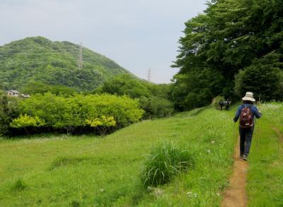 弘法山ー矢倉沢往還(東海道裏街道)を散策、ジンギスカンで満腹