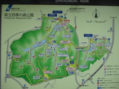 神奈川県立四季の森公園水無月お散歩ナビ(1万歩/D)