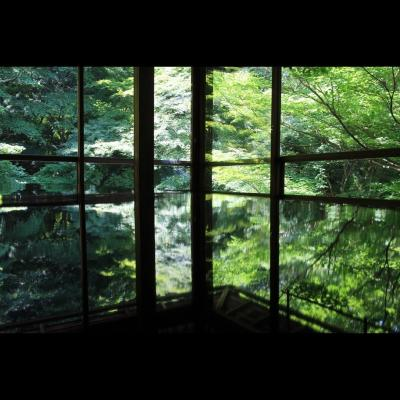 そうだ、新緑の京都に行こう2021