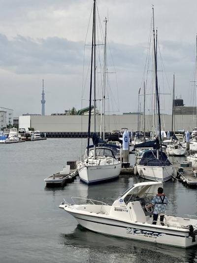 潮風を感じる旅。海を見たい。in Tokyo bay shiomi prince