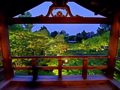 恋い焦がれる仏像と景色に逢いに行く旅 東福寺編