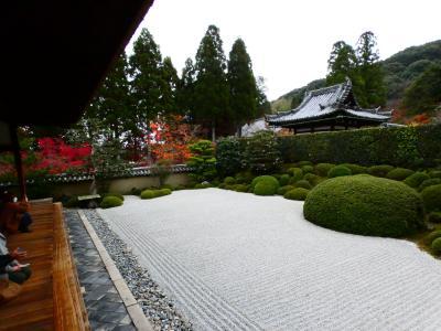 京都 京田辺 一休寺庫裏・方丈(Ikkyuji Temple Kitchen & Living, Kyotanabe, Kyoto, JP)