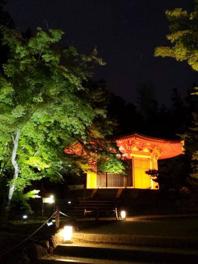 2021年6月京都青もみじ紀行①~東福寺ライトアップ