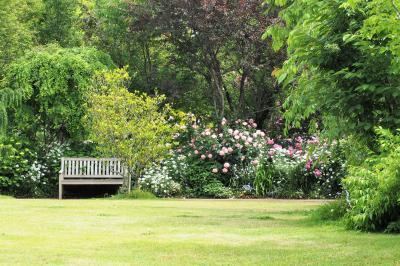 横浜で薔薇香る3つのガーデンめぐり(イングリッシュガーデン・港の見える丘公園・山下公園)