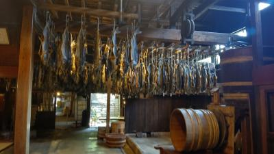 ぱぱのぷらぷら散歩...塩引き鮭を食べに行こう...1日目
