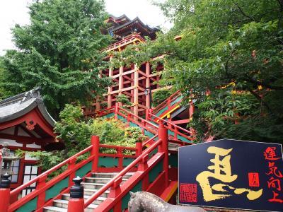 困窮する観光業界を微力ながら救うべく佐賀県へ旅に出ました   《前編   祐徳稲荷で色々と祈願しましたで~》