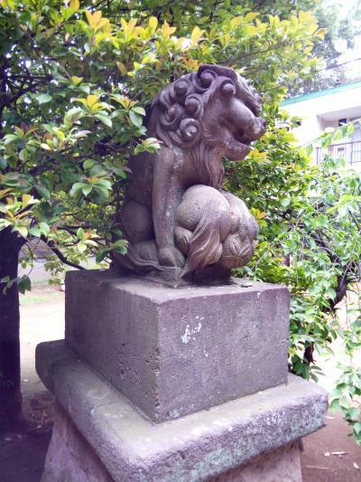 サイクリング散歩 1 狼&かわいい子獅子の狛犬に遭遇 神社巡り 方南~砧