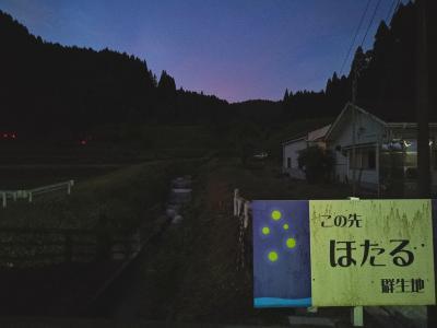別府のくるくる寿司亀正とホタルを探しに小国方面