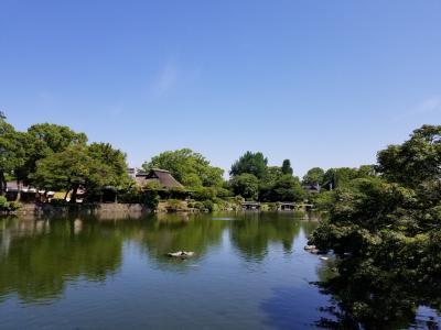 水前寺公園へgo