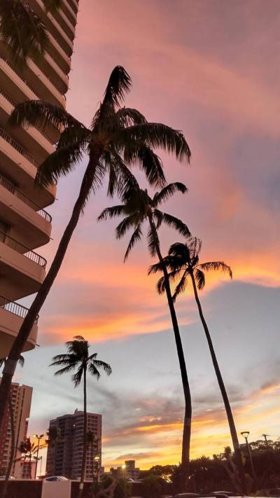 コロナ禍五回目のハワイ
