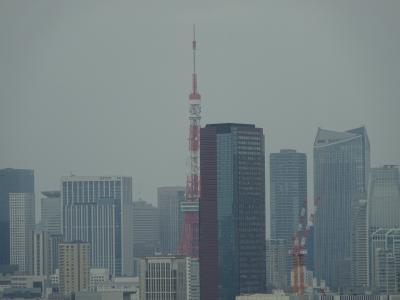 2021.3 東京マリオット  再び