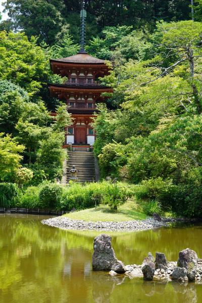 20210625-3 加茂 浄瑠璃寺、本堂拝観は修復中でお休みやったけど…お庭が綺麗やね