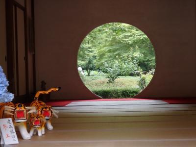 2021年6月紫陽花を求めて北鎌倉散策