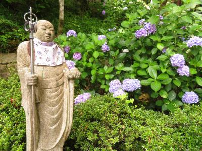運行開始1周年の特急ひのとりに乗って大和路へ①紫陽花が満開の長谷寺