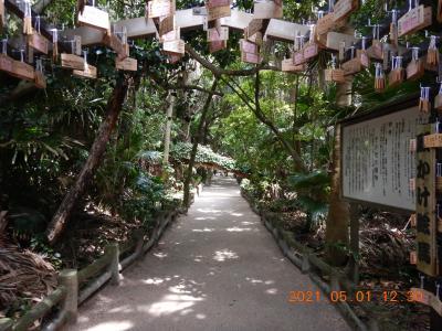 禁断の越県の旅(7) サンメッセ日南を出て、道の駅「フェニックス」に立ち寄って青島神社へ・・・