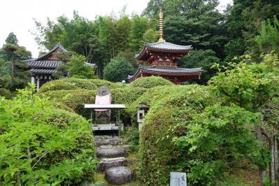 20210626-3 桜井 桜井駅から大神神社まで、山の辺の道を歩く