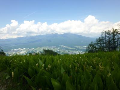 富士見パノラマリゾート・・スズランが咲く別世界