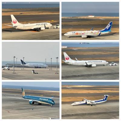 2021年3月#6 遂に見た☆ドリームリフター♪中部国際空港Part3&2回目のフォーポイントバイシェラトン(ルームツアー)!