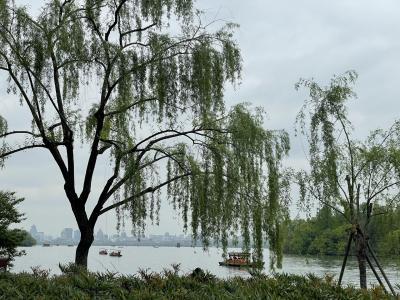 2021.4月 杭州旅行(上海からの近場旅行)