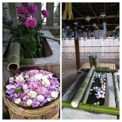 梅雨の晴れ間に阪急沿線で野見神社の花手水と水無瀬神宮の玉手水や風鈴に癒される