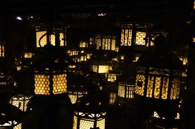 20210627-3 奈良 植物園来たんで、春日大社にもお参りに行ってきます