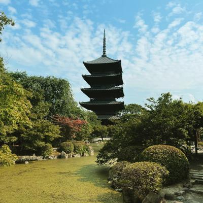 大阪府民が京都へ2泊3日の旅へ行ってきました(1日目)