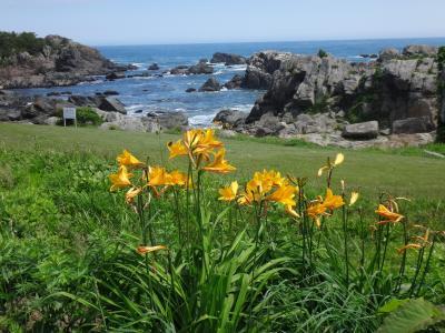 日本の北の果てまで行ってやるぅ 14 久しぶりの種差海岸、走りにくくて泣いた八戸