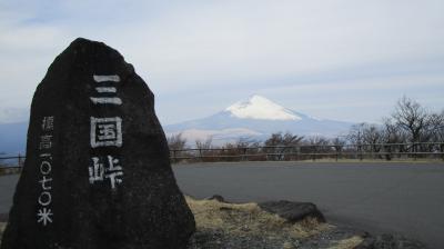2021年2月 RCIのポイントを使ってサンダンスリゾート河口湖へ!富士山ざんまい3泊4日の旅 1日目