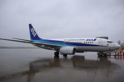 お疲れ様でした、そしてさようなら ~Boeing737-700~