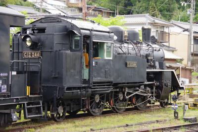 明知鉄道で、蒸気機関車の運転体験を見学