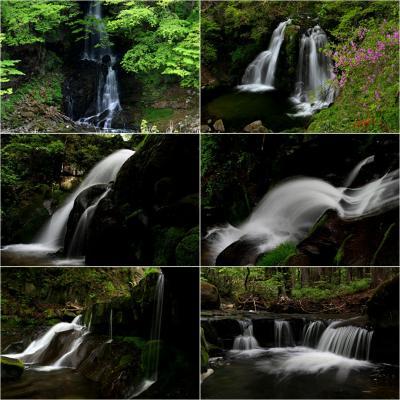◆晩春の羽鳥湖高原~滝巡り (罠かけの滝・明神滝・立矢川の滝・更目木の滝)