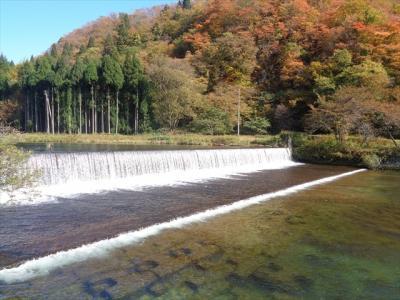 陣立て市民の森と最上白川渓流公園の紅葉