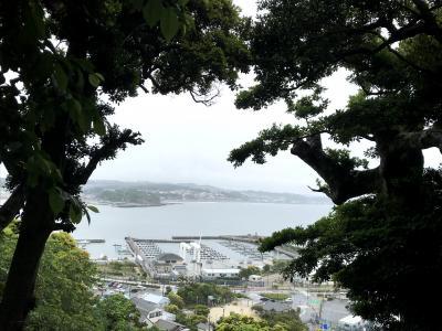 江ノ島訪問・鎌倉アジサイ号乗車