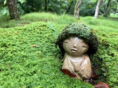 そうだ梅雨の京都って。。しっとり苔庭♪癒されるよねぇ~(´▽`) 1日目前編 三千院へ Let's Go!!