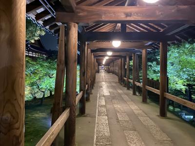 そうだ梅雨の京都って。。青もみじライトアップ♪幻想的よねぇ~(´▽`) 1日目夜 東福寺へ Let's Go!!