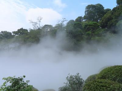 都内の雲海とアフタヌーンティー