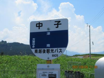 我が姓のルーツを尋ねて新潟津南へ~そこは桜の名所だった。