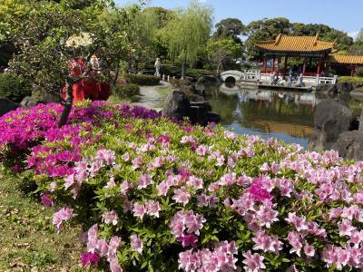川崎大師から大師公園瀋秀園へ行ってみた