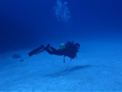 夏!沖縄 波照間島「マダラの根」でダイビング