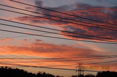 久し振りに見られた美しい夕焼け