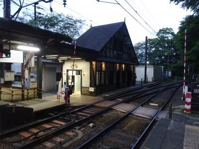 用事のついで、今回は神奈川県内へ【その5】 バスと電車での箱根の山越えと、宮ノ下駅前のダイニング