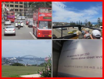 JALファーストクラスでシドニー(13)2階建てバス(ボンダイ・シドニーエクスプローラー)&シドニータワー