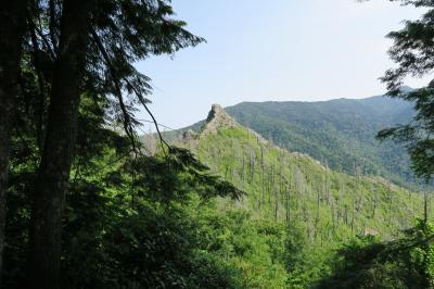 Great Smoky Mountains グレイトスモーキーマウンテン国立公園 トレイル歩き(1)