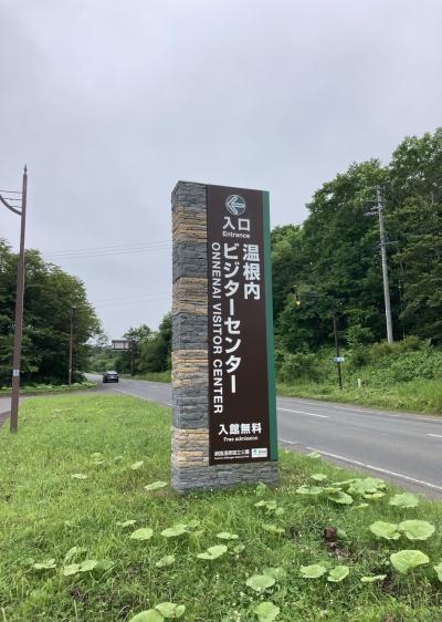 2021釧路②海霧(じり)の朝~湿原を歩く!