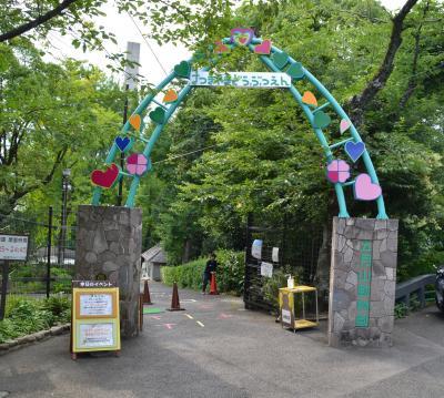 ウォンバットを見に五月山動物園へ