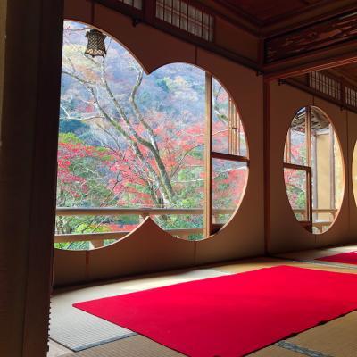 2020年 紅葉の京都